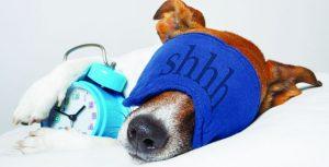 Τι προσφέρει ο ύπνος;